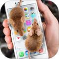 手机养宠物的app v1.0.1最新版