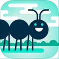 易碎的虫子Squashy Bug手游1.3