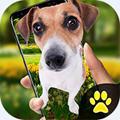 手机的小狗玩笑app v1.2最新版