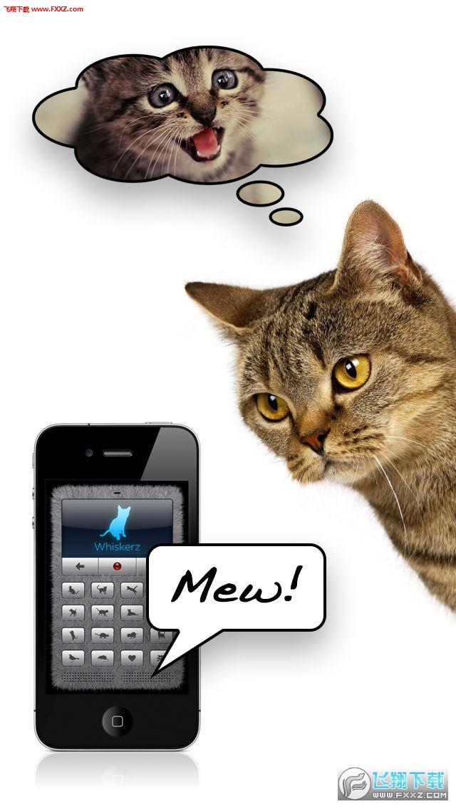 可以翻译成猫语言的软件最新版截图0