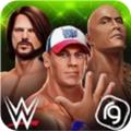 WWE混乱中文破解版