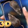 手机屏幕养兔子appv1.0