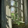 wallpaper engine The Last of Us HDR动态壁纸
