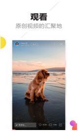 趣多拍app安卓版1.0.1.0608.1106截图1