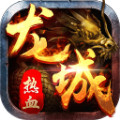 热血龙城官网版1.0