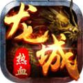 热血龙城九游版1.0