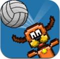 像素排球(Pixel Volley)中文版1.0