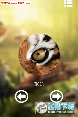 动物视角相机游戏v1.2截图1
