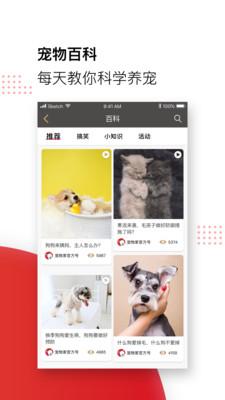 宠物家APP安卓版5.0.0截图4