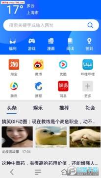 小鸟浏览器app