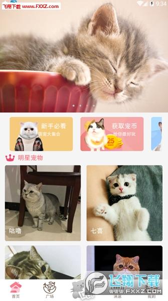猫咪社区(猫奴专属)app