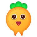 萝卜钱庄app 1.0.4