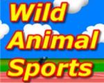 野生动物运动会