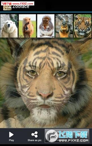 zooface变脸appv1.3.6截图0
