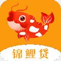 锦鲤贷app 1.0