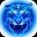 四虎影音app 3.8.6