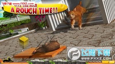疯狂猫vs老鼠3D手机版v1.5截图3