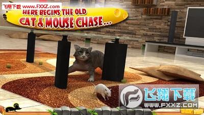 疯狂猫vs老鼠3D手机版v1.5截图2