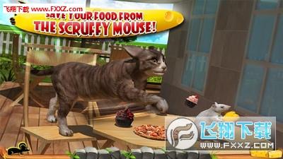 疯狂猫vs老鼠3D手机版v1.5截图1
