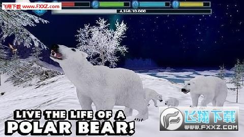 北极熊模拟器最新版截图0