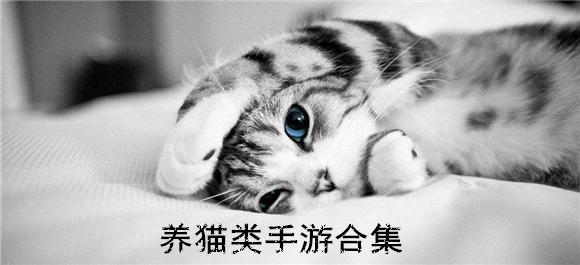 养猫类手游合集