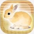 治愈兔兔养成汉化版V1.2
