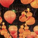 2018元宵节灯会观后感大全