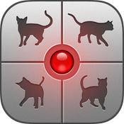 抖音里和猫对话app