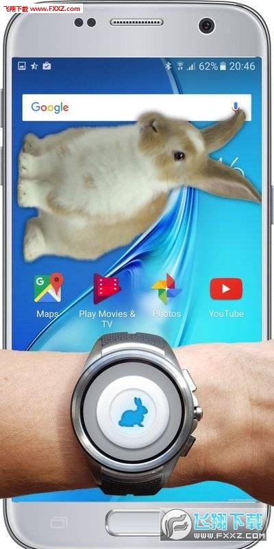 兔子在手机的可爱玩笑安卓版v1.1截图0