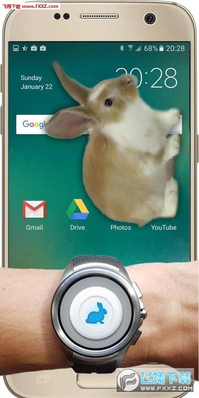 兔子在手机的可爱玩笑安卓版v1.1截图1