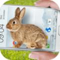 兔子在手机的可爱玩笑安卓版v1.1