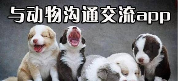 宠物翻译器_宠物翻译软件_动物翻译软件