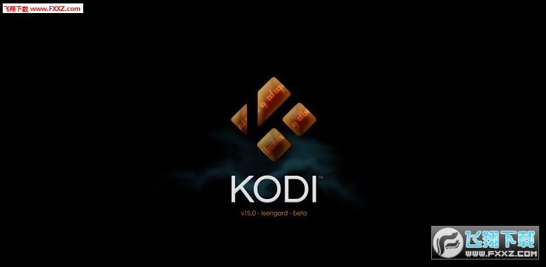 Kodi ( XBMC) 4K电视、4K盒子TV版18.0 免费版截图0