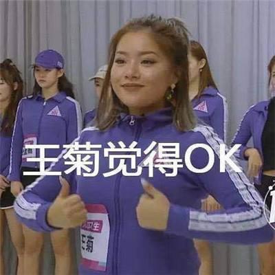 101菊姐表情动态图