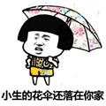 抖音小生的花伞还落在你家表情包
