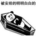 抖音躺棺材安排表情包
