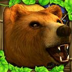 棕熊模拟游戏