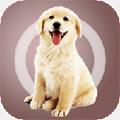 人狗交流器app1.0.0