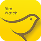 小鸟观映app
