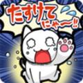 救救猫咪安卓版