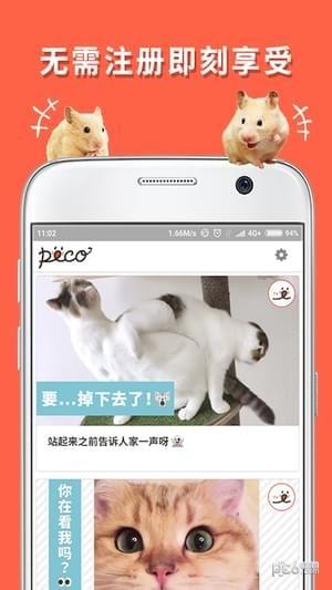 朋宠PECO手机版截图0