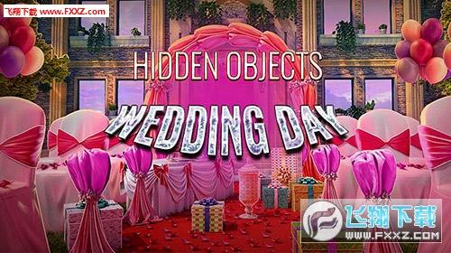 隐藏物体婚礼日Hidden objects Wedding dayv1.0.0 安卓版截图0