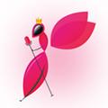 蜂窝直播app最新版1.2.3