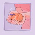 抖音少女心壁纸高清粉色大全