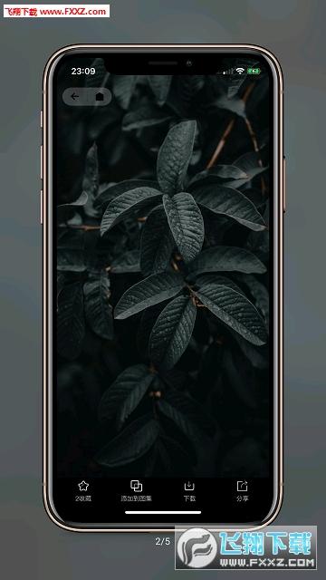 纸塘壁纸app安卓版1.2.6截图1