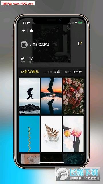 纸塘壁纸app安卓版1.2.6截图2