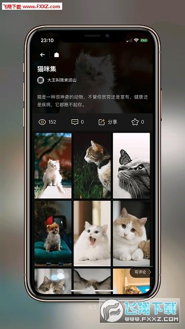 纸塘壁纸app安卓版1.2.6截图3