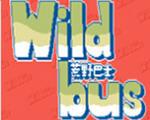 Wildbus荒野巴士中文版