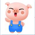 小憨猪app手机安卓版 9.0.0.1