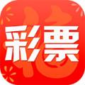 正版蓝月亮精选资料二四六精选资料官网正版 v1.0